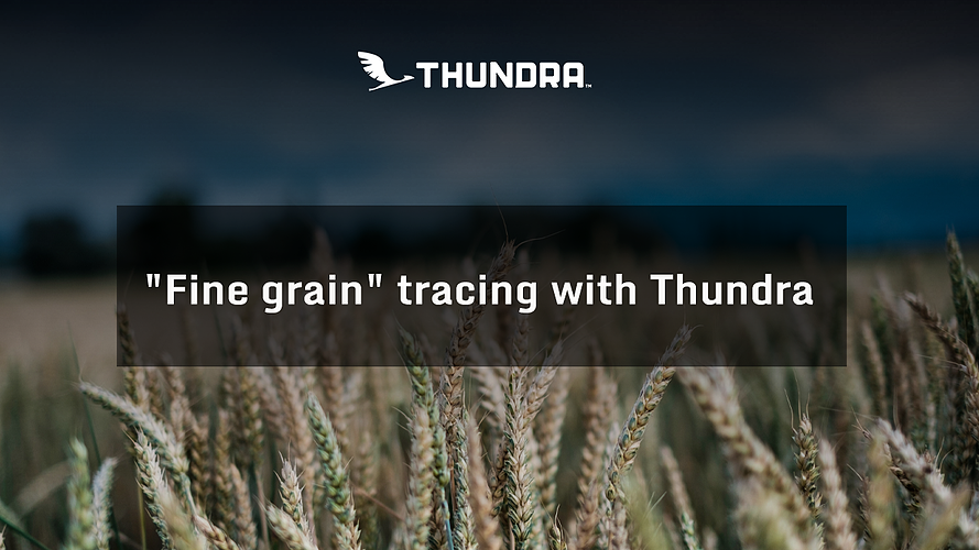 fine-grain-tracing-with-thundra